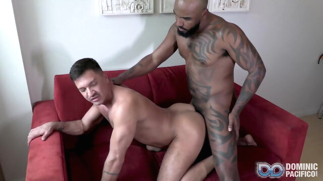 Vitor Guedes Goes Deep black beeg videos