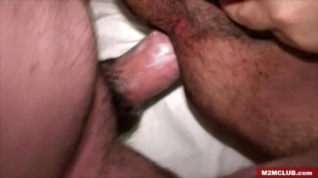 Hot Latin Bear Tagteamed bareback beeg videos